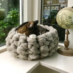 catbed - natalie wool