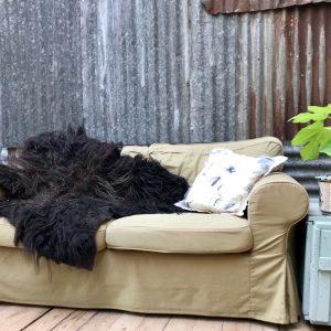 Black beauty - natalie wool