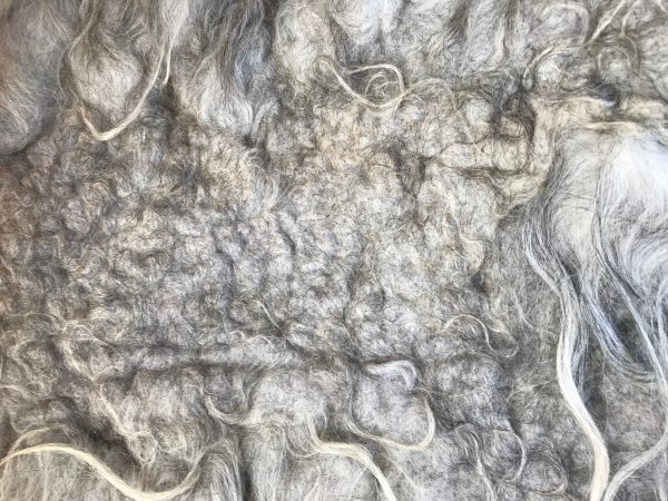 Natalie wool - ruwe wol