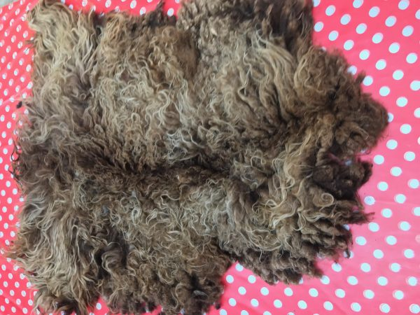 natalie wool - ruwe wol E