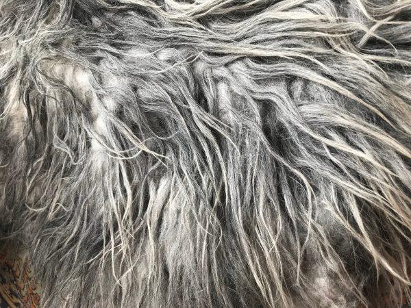 sylvia- natalie wool