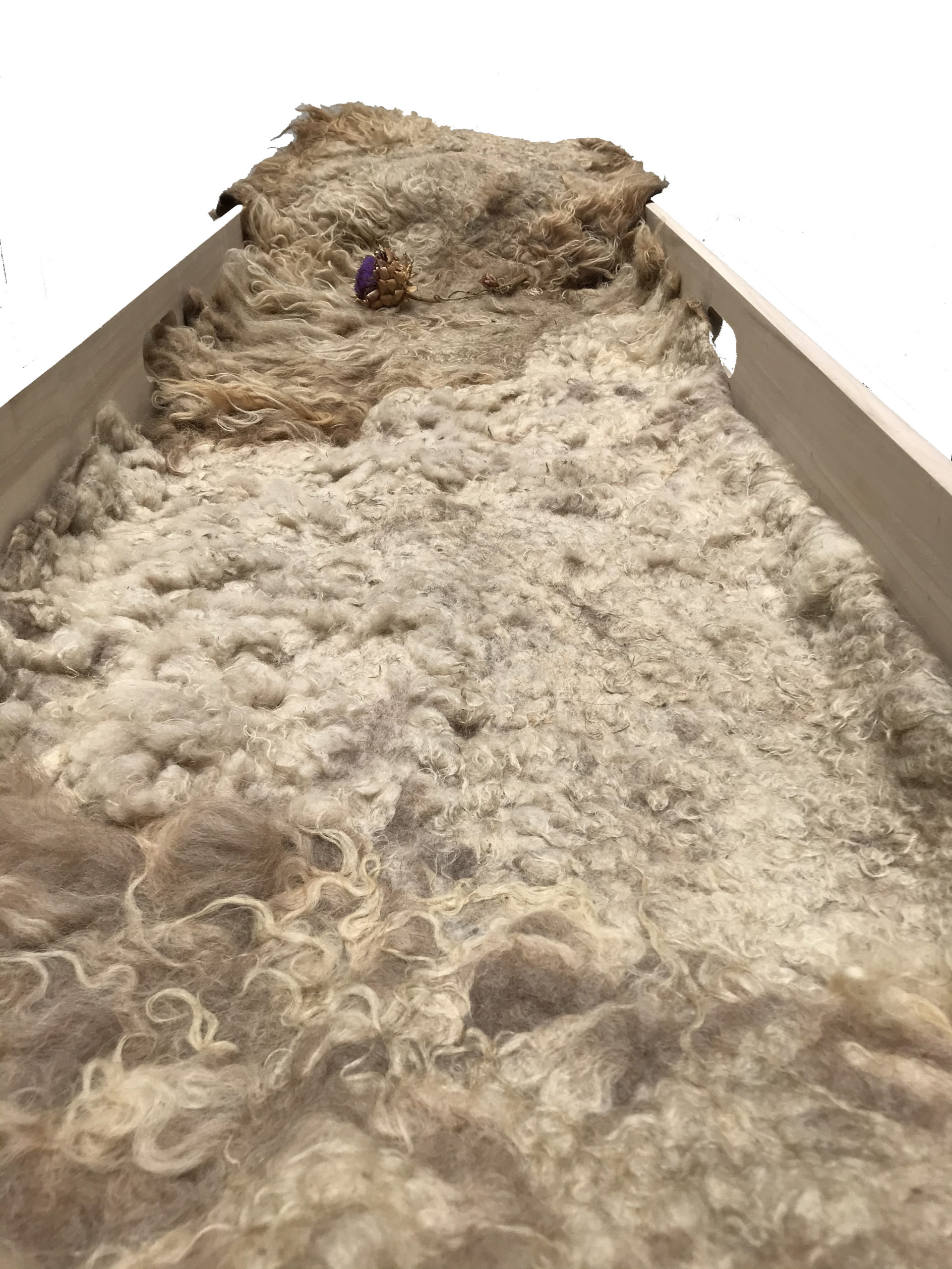 natalie wool baarkleed vilt